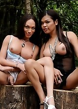 Gorgeous tgirls Carmen and Mia posing in the woods
